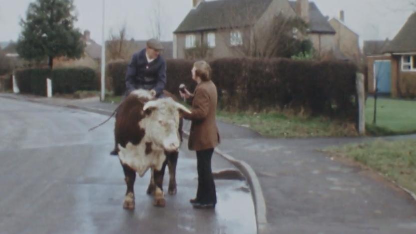 Farmer riding Bull through village